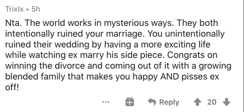 Text - Trixlx • 5h Nta. The world works in mysterious ways. They both intentionally ruined your marriage. You unintentionally ruined their wedding by having a more exciting life while watching ex marry his side piece. Congrats on winning the divorce and coming out of it with a growing blended family that makes you happy AND pisses ex off! Reply 20 ...