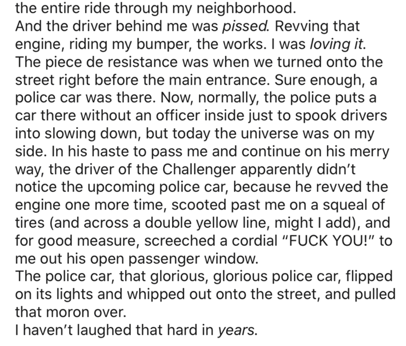 Text - the entire ride through my neighborhood. And the driver behind me was pissed. Revving that engine, riding my bumper, the works. I was loving it. The piece de resistance was when we turned onto the street right before the main entrance. Sure enough, a police car was there. Now, normally, the police puts a car there without an officer inside just to spook drivers into slowing down, but today the universe was on my side. In his haste to pass me and continue on his merry way, the driver of th