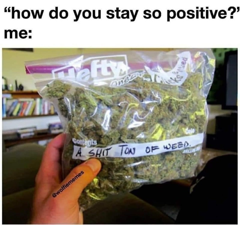 """Leaf - """"how do you stay so positive?"""" me: nafty anea Contents A SHIT TON OF WEED. @wolfiememes"""
