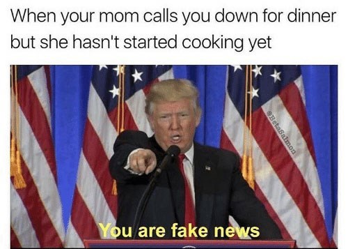 Speech - When your mom calls you down for dinner but she hasn't started cooking yet You are fake news SBetaSalmon