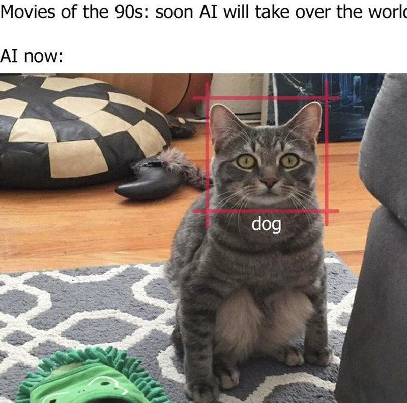 Cat - Movies of the 90s: soon AI will take over the world AI now: dog