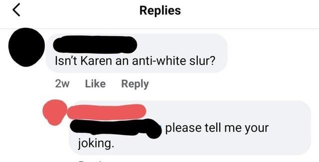 Text - Replies Isn't Karen an anti-white slur? 2w Like Reply please tell me your joking.