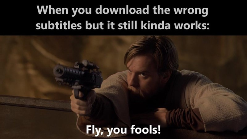 Photo caption - When you download the wrong subtitles but it still kinda works: Fly, you fools!