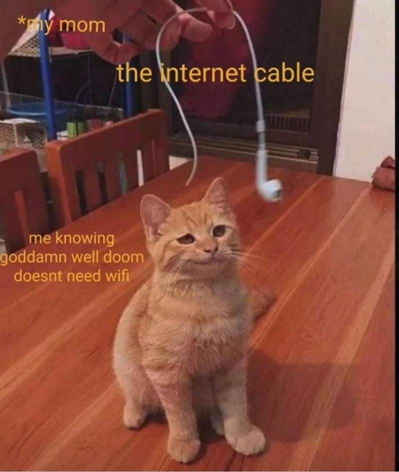 Cat - *ný mom the internet cable me knowing goddamn well doom doesnt need wifi