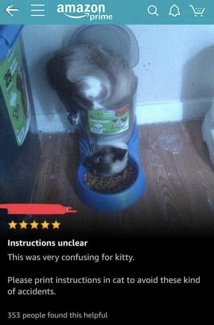 Photography - = amazon prime Q Sats feedr Instructions unclear This was very confusing for kitty. Please print instructions in cat to avoid these kind of accidents. 353 people found this helpful