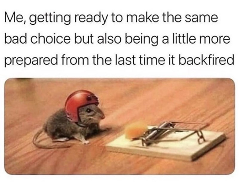 Mousetrap - Me, getting ready to make the same bad choice but also being a little more prepared from the last time it backfired