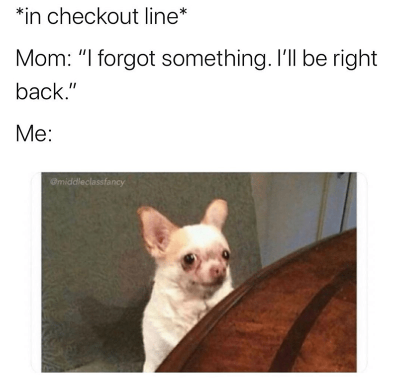 """French bulldog - *in checkout line* Mom: """"I forgot something. I'll be right back."""" Me: @middleclassfancy"""