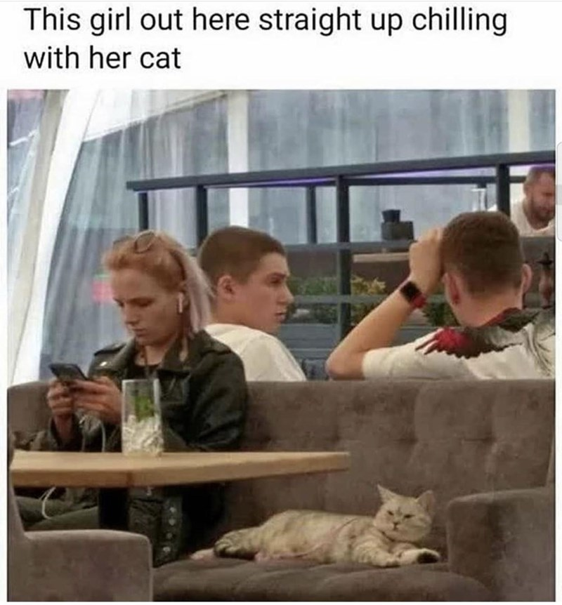 Human - This girl out here straight up chilling with her cat