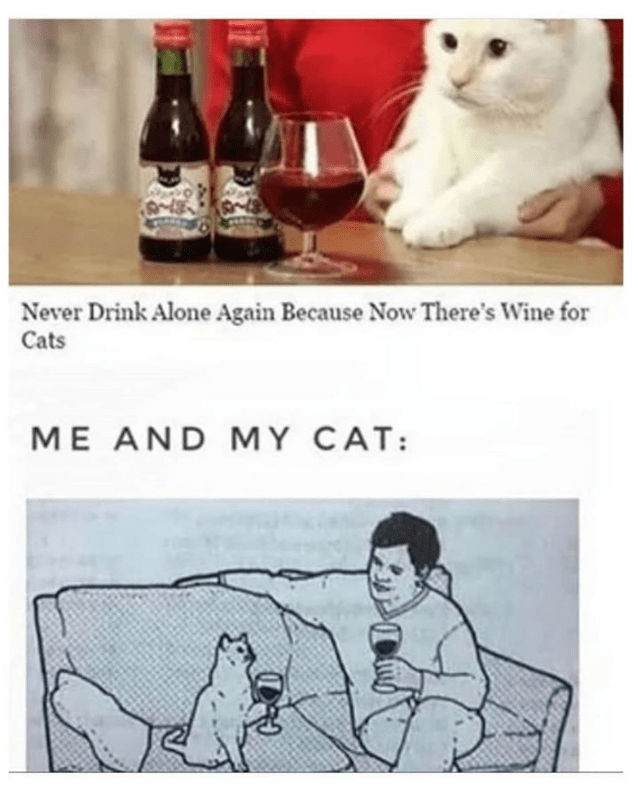 Cat - Never Drink Alone Again Because Now There's Wine for Cats ME AND MY CAT: