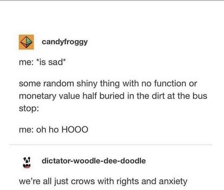 Text - candyfroggy me: *is sad* some random shiny thing with no function or monetary value half buried in the dirt at the bus stop: me: oh ho HOOO dictator-woodle-dee-doodle we're all just crows with rights and anxiety