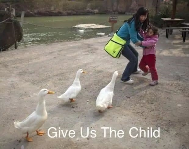 Duck - Give Us The Child