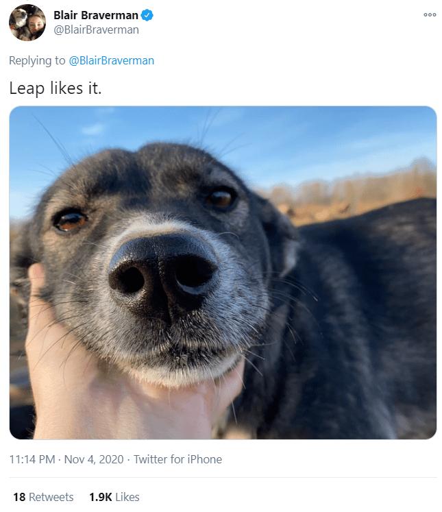Dog - Blair Braverman @BlairBraverman 000 Replying to @BlairBraverman Leap likes it. 11:14 PM · Nov 4, 2020 · Twitter for iPhone 18 Retweets 1.9K Likes