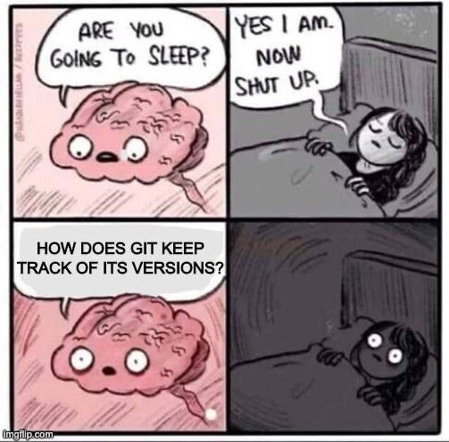 Cartoon - YES I AM. ARE YOU GOING TO SLEEP? NOW SHUT UP HOW DOES GIT KEEP TRACK OF ITS VERSIONS? imgfilp.com