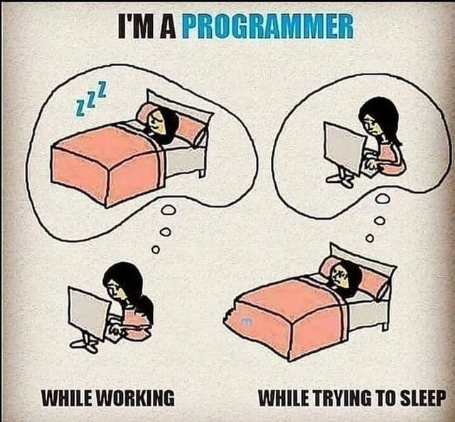 Cartoon - I'M A PROGRAMMER WHILE WORKING WHILE TRYING TO SLEEP