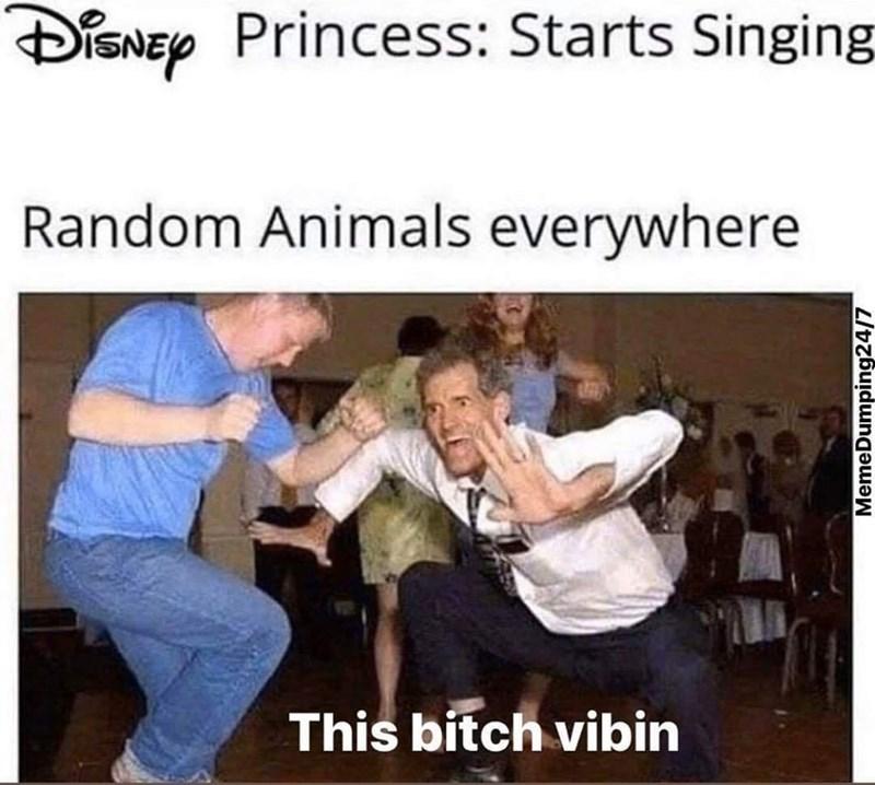 Text - Photo caption - DISNEY Princess: Starts Singing Random Animals everywhere This bitch vibin MemeDumping24/7