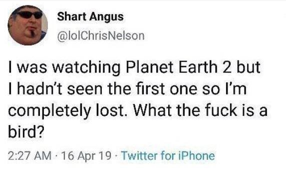 Text - Text - Shart Angus @lolChrisNelson I was watching Planet Earth 2 but I hadn't seen the first one so l'm completely lost. What the fuck is a bird? 2:27 AM 16 Apr 19 Twitter for iPhone