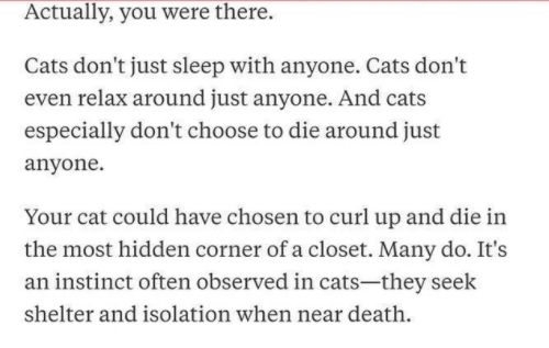 Text - Actually, you were there. Cats don't just sleep with anyone. Cats don't even relax around just anyone. And cats especially don't choose to die around just anyone. Your cat could have chosen to curl up and die in the most hidden corner of a closet. Many do. It's an instinct often observed in cats-they seek shelter and isolation when near death.