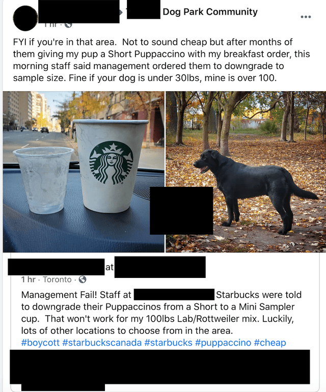 Canidae - Dog Park Community ... FYI if you're in that area. Not to sound cheap but after months of them giving my pup a Short Puppaccino with my breakfast order, this morning staff said management ordered them to downgrade to sample size. Fine if your dog is under 30lbs, mine is over 100. at 1 hr · Toronto . |Starbucks were told Management Fail! Staff at to downgrade their Puppaccinos from a Short to a Mini Sampler cup. That won't work for my 100lbs Lab/Rottweiler mix. Luckily, lots of other lo