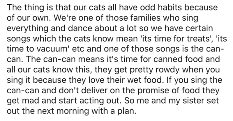 Text - The thing is that our cats all have odd habits because of our own. We're one of those families who sing everything and dance about a lot so we have certain songs which the cats know mean 'its time for treats', 'its time to vacuum' etc and one of those songs is the can- can. The can-can means it's time for canned food and all our cats know this, they get pretty rowdy when you sing it because they love their wet food. If you sing the can-can and don't deliver on the promise of food they get