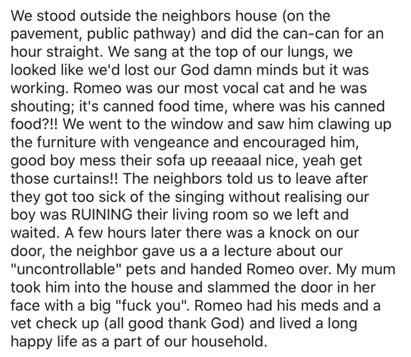 Text - We stood outside the neighbors house (on the pavement, public pathway) and did the can-can for an hour straight. We sang at the top of our lungs, we looked like we'd lost our God damn minds but it was working. Romeo was our most vocal cat and he was shouting; it's canned food time, where was his canned food?!! We went to the window and saw him clawing up the furniture with vengeance and encouraged him, good boy mess their sofa up reeaaal nice, yeah get those curtains!! The neighbors told