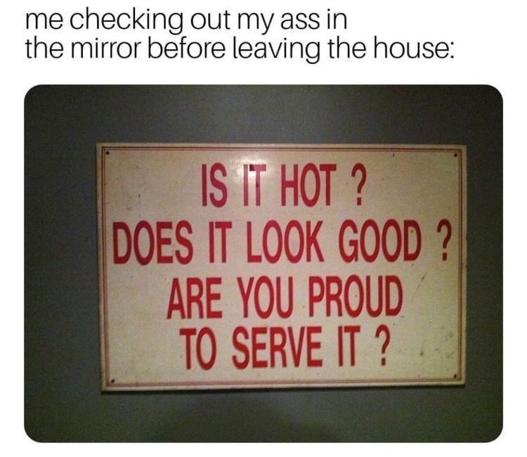 Text - me checking out my ass in the mirror before leaving the house: IS IT HOT ? DOES IT LOOK GOOD ? ARE YOU PROUD TO SERVE IT ?