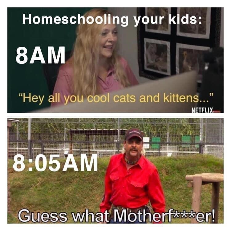 """Text - Homeschooling your kids: 8AM """"Hey all you cool cats and kittens..."""" NETFLIX 8:05AM Guess what Motherf**er!"""