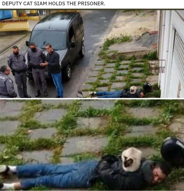 Mode of transport - DEPUTY CAT SIAM HOLDS THE PRISONER. CIA
