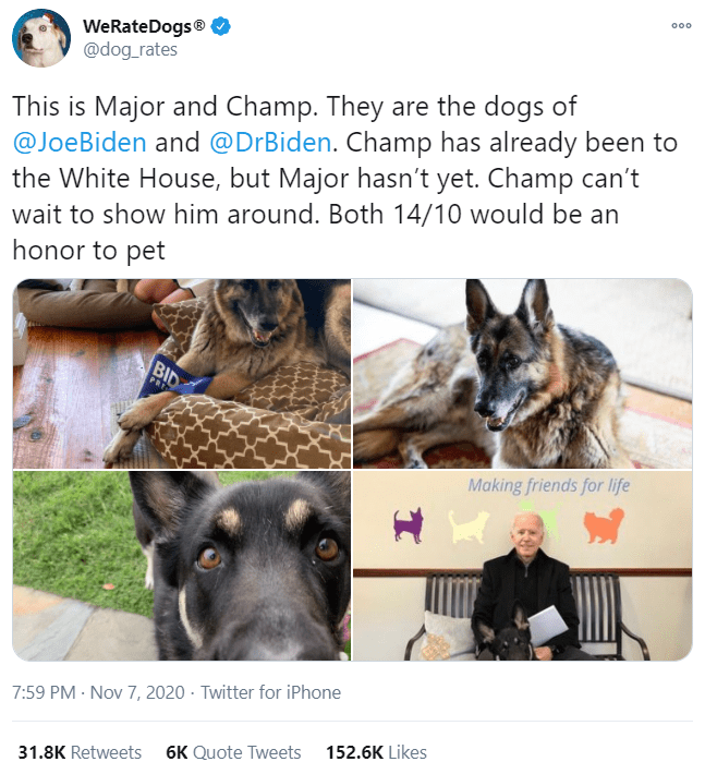 German shepherd dog - 000 WeRateDogs® @dog_rates This is Major and Champ. They are the dogs of @JoeBiden and @DrBiden. Champ has already been to the White House, but Major hasn't yet. Champ can't wait to show him around. Both 14/10 would be an honor to pet BID PRI Making friends for life 7:59 PM · Nov 7, 2020 · Twitter for iPhone 152.6K Likes 6K Quote Tweets 31.8K Retweets