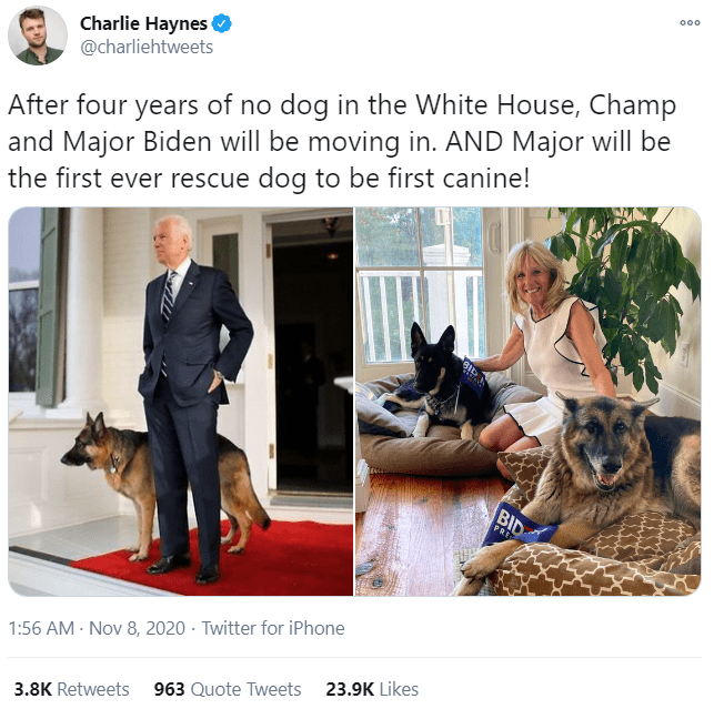Canidae - 00. Charlie Haynes O @charliehtweets After four years of no dog in the White House, Champ and Major Biden will be moving in. AND Major will be the first ever rescue dog to be first canine! BID PRE 1:56 AM - Nov 8, 2020 · Twitter for iPhone 3.8K Retweets 963 Quote Tweets 23.9K Likes