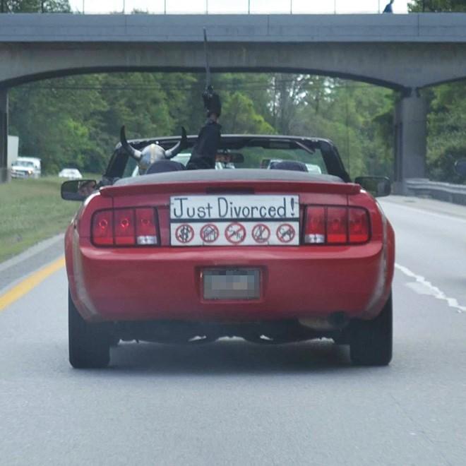 Vehicle - Just Divorced!