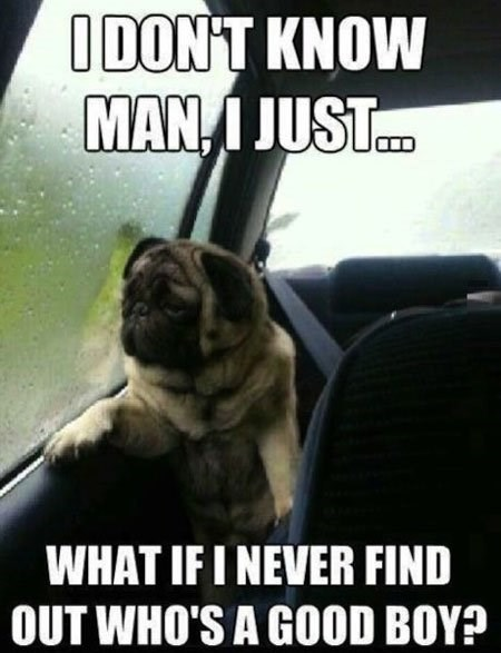 Internet meme - IDONT KNOW MAN, I JUST. WHAT IF I NEVER FIND OUT WHO'S A GOOD BOY?