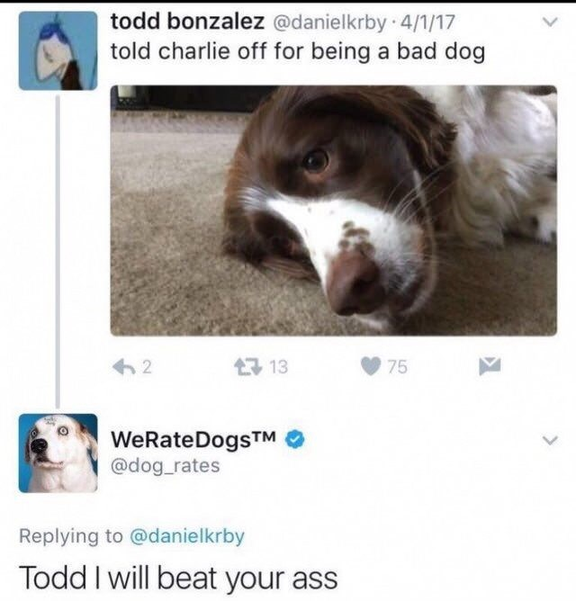 Canidae - todd bonzalez @danielkrby 4/1/17 told charlie off for being a bad dog t7 13 75 WeRateDogsTM @dog_rates Replying to @danielkrby Todd I will beat your ass
