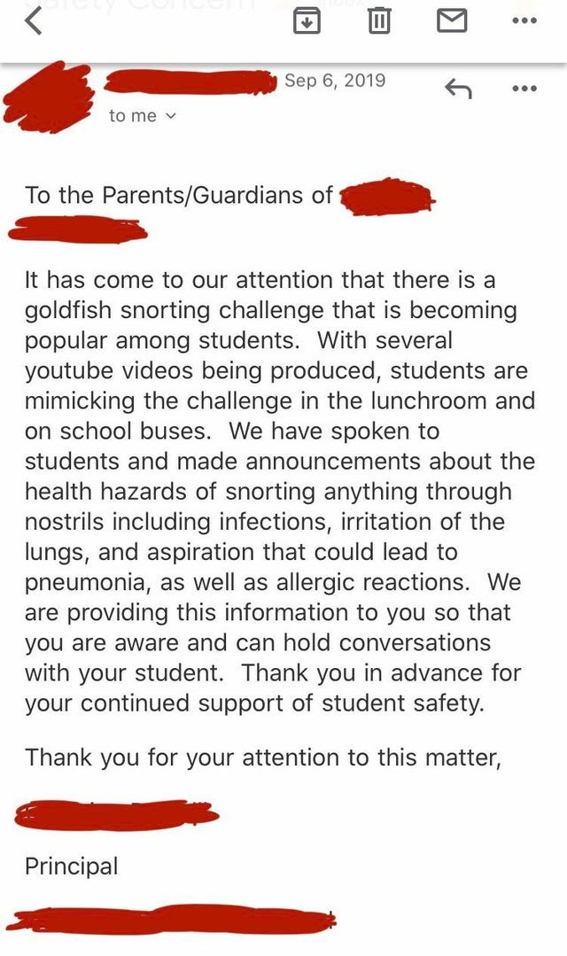 Text - ... Sep 6, 2019 ... to me v To the Parents/Guardians of It has come to our attention that there is a goldfish snorting challenge that is becoming popular among students. With several youtube videos being produced, students are mimicking the challenge in the lunchroom and on school buses. We have spoken to students and made announcements about the health hazards of snorting anything through nostrils including infections, irritation of the lungs, and aspiration that could lead to pneumonia,