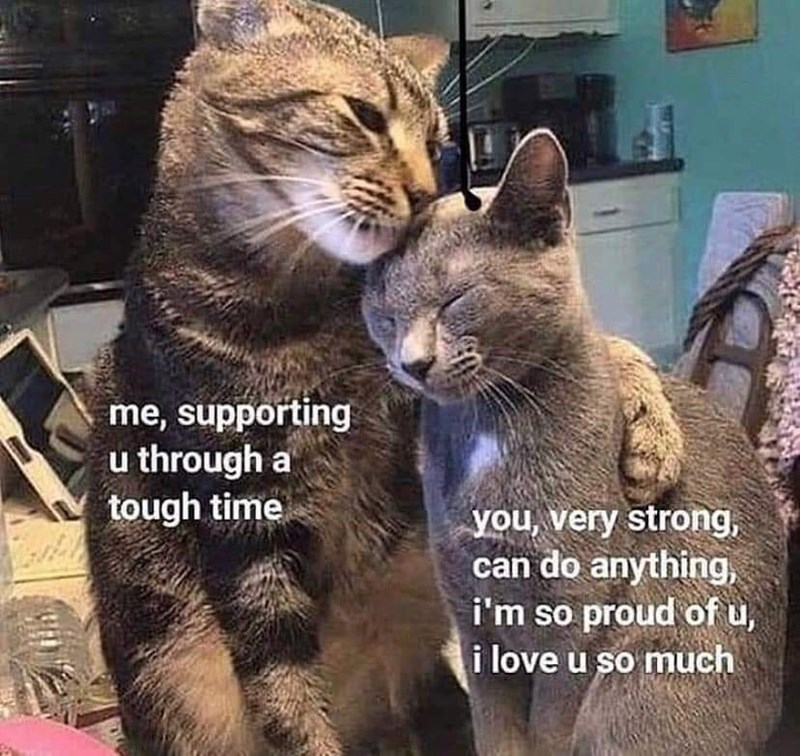 Cat - me, supporting u through a tough time you, very strong, can do anything, i'm so proud of u, i love u so much