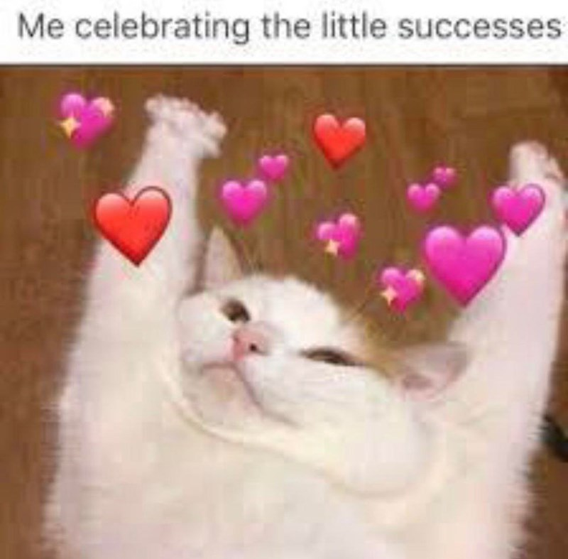 Cat - Me celebrating the little successes