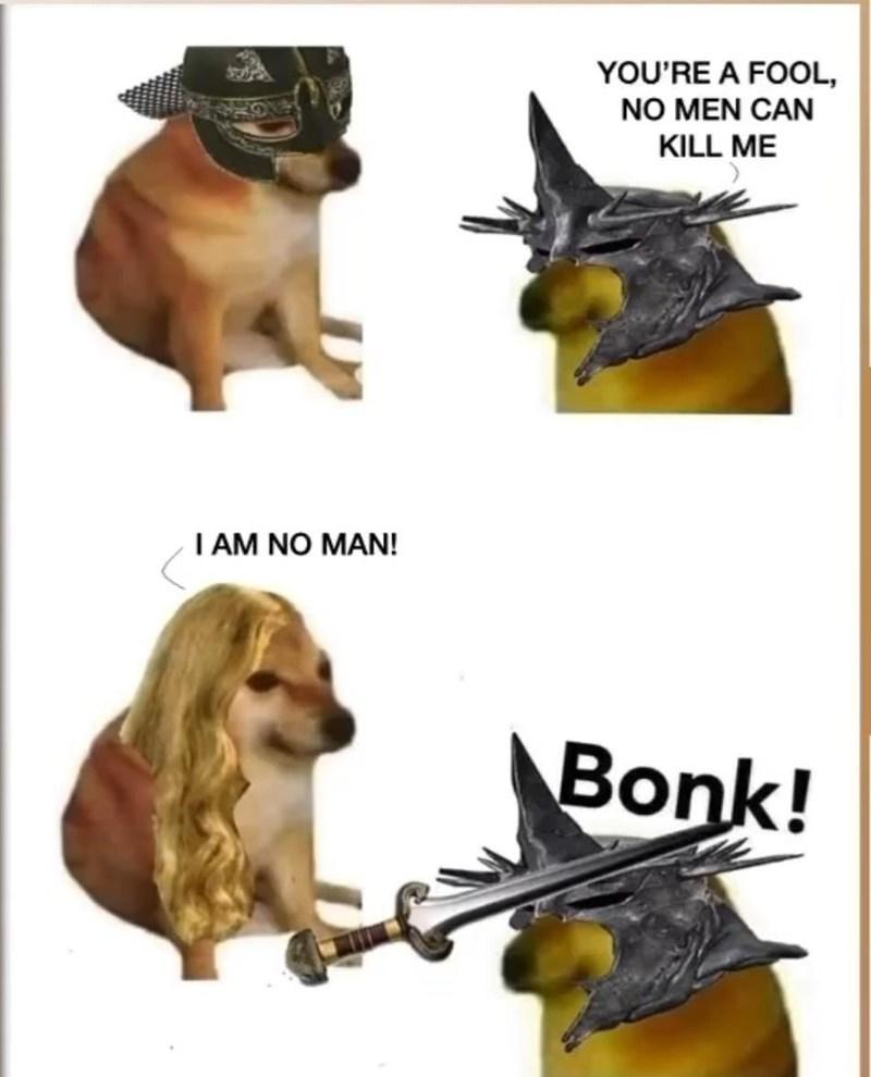 Canidae - YOU'RE A FOOL, NO MEN CAN KILL ME I AM NO MAN! Bonk!
