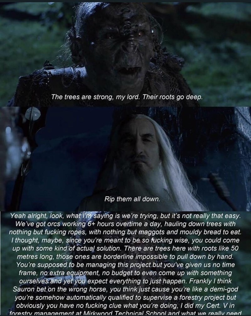 Text - The trees are strong, my lord. Their roots go deep. Rip them all down. Yeah alright, look, what I'm saying is we're trying, but it's not really that easy. We've got orcs working 6+ hours overtime a day, hauling down trees with nothing but fucking ropes, with nothing but maggots and mouldy bread to eat. I thought, maybe, since you're meant to be so fucking wise, you could come up with some kind of actual solution. There are trees here with roots like 50 metres long, those ones are borderli