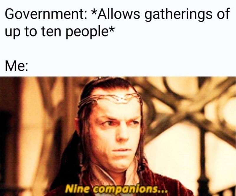 Text - Government: *Allows gatherings of up to ten people* Me: Nine companions...