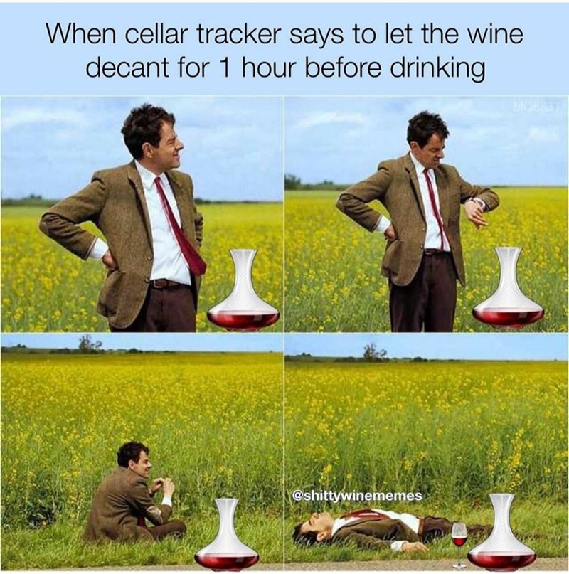 Grass - When cellar tracker says to let the wine decant for 1 hour before drinking @shittywinememes