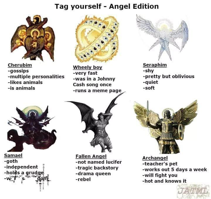 Organism - Tag yourself - Angel Edition Cherubim -gossips -multiple personalities -likes animals Wheely boy -very fast -was in a Johnny Cash song once Seraphim -shy -pretty but oblivious -quiet -soft -is animals -runs a meme page Samael -goth -indępendent -holds a grudge -w Fallen Angel -not named lucifer -tragic backstory -drama queen -rebel Archangel -teacher's pet -works out 5 days a week -will fight you -hot and knows it JATML