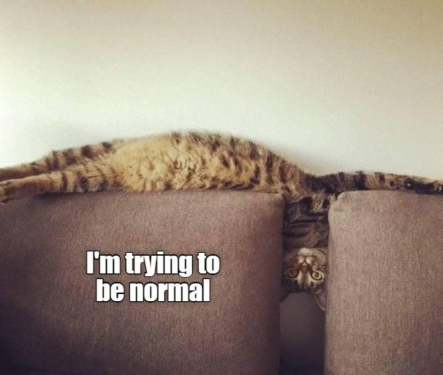 Font - I'm trying to be normal