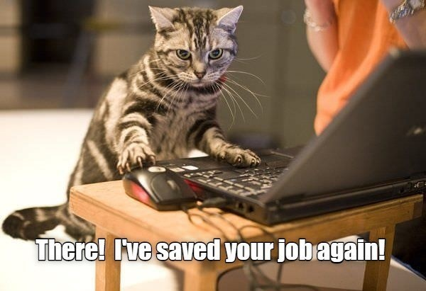 Cat - There! Ive saved your jobagain!