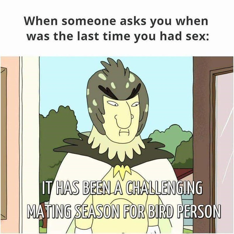 Cartoon - When someone asks you when was the last time you had sex: IT HAS BEEN A CHALLENGING MATING SEASON FOR BIRD PERSON