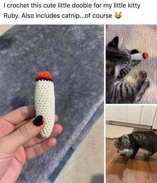 Cat - I crochet this cute little doobie for my little kitty Ruby. Also includes catnip...of course
