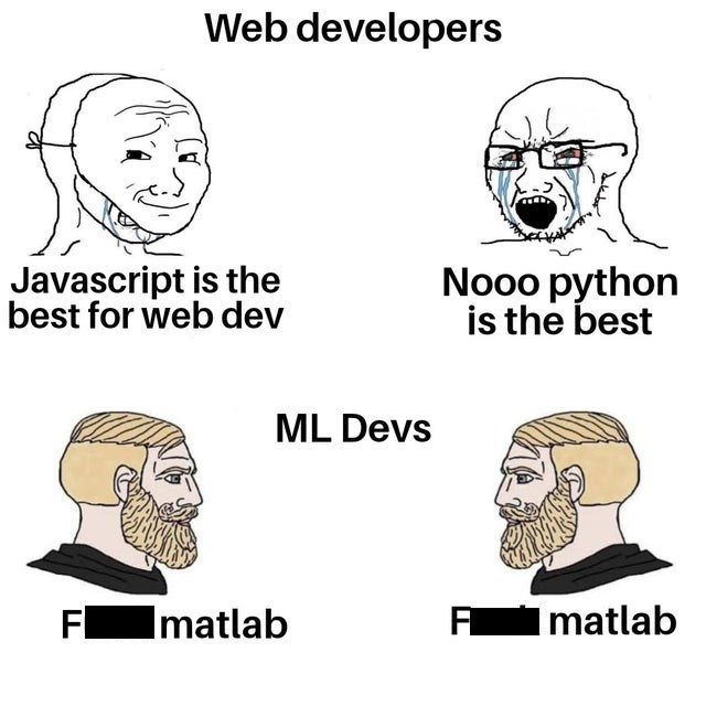 Face - Web developers Javascript is the best for web dev Nooo python is the best ML Devs Fmatlab Imatlab