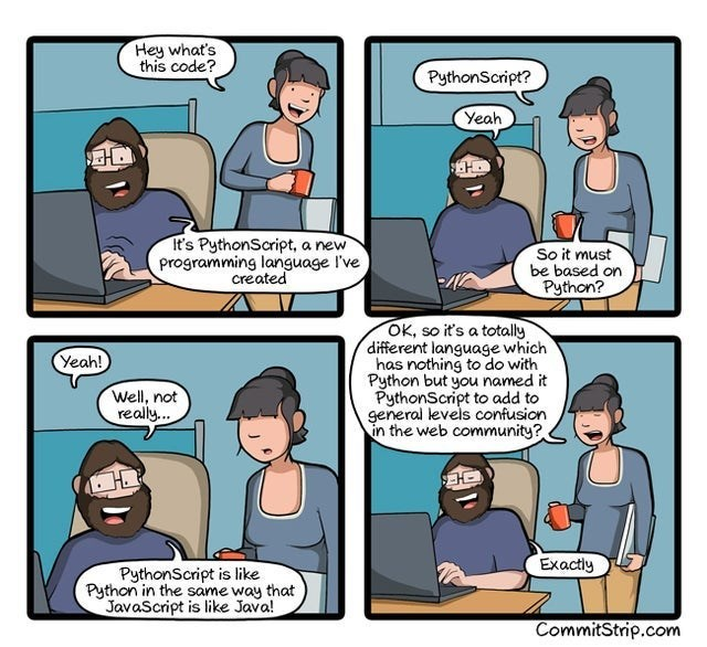 Comics - Hey what's this code? PythonScript? Yeah It's PythonScript, a new programming language I've created So it must be based on Python? OK, so it's a totally different language which has nothing to do with Python but you named it PythonScript to add to general levels confusion in the web community? Yeah! Well, not really. Exactly PythonScript is like Python in the same way that JavaScript is like Java! CommitStrip.com