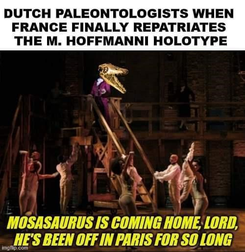 Poster - DUTCH PALEONTOLOGISTS WHEN FRANCE FINALLY REPATRIATES THE M. HOFFMANNI HOLOTYPE MOSASAURUS IS COMING HOME, LORD, HE'S BEEN OFF IN PARIS FOR SO LONG imgflip.com
