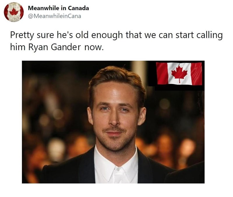 Text - Meanwhile in Canada @MeanwhileinCana Pretty sure he's old enough that we can start calling him Ryan Gander now.