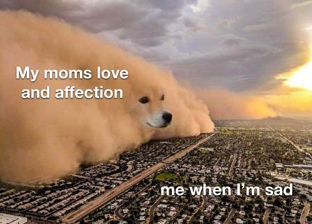 Canidae - My moms love and affection me when l'm sad