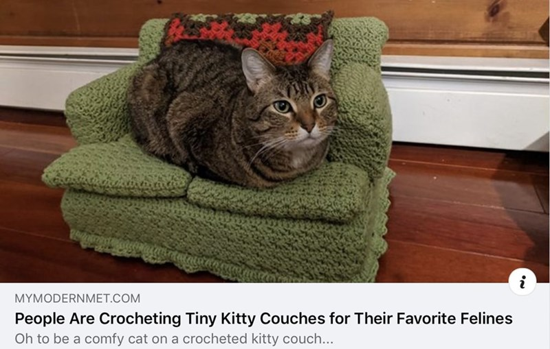 Cat - MYMODERNMET.COM People Are Crocheting Tiny Kitty Couches for Their Favorite Felines Oh to be a comfy cat on a crocheted kitty couch...
